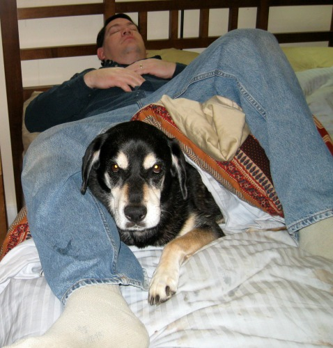 Mike and Shadow loved to nap together.
