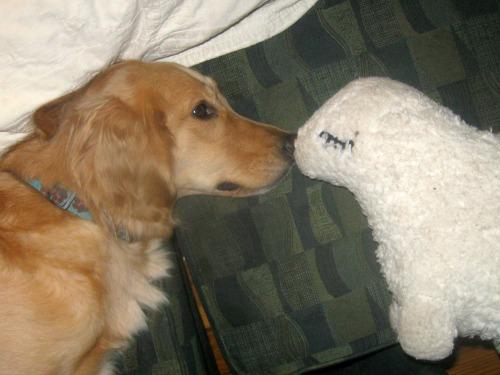 Honey's favorite gift is her stuffed lamb.