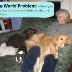 It's a Dog World Problem #2 – Wordless Wednesday