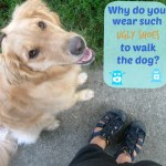 Do You Wear Ugly Shoes When You Walk YOUR Dog?