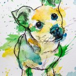 Celebrate Your Colorful Pet