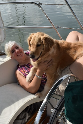 Honey the golden retriever with her cushion o the boat.