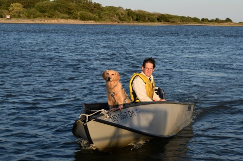 Honey the golden retriever returns to Meander in the dinghy.