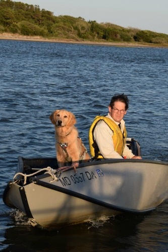 Want a dog who loves cruising and living on a boat with you? Start here. [golden retriever in bow of small boat with man steering behind her]