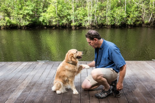 Honey the golden retriever gives her paw to Mike.
