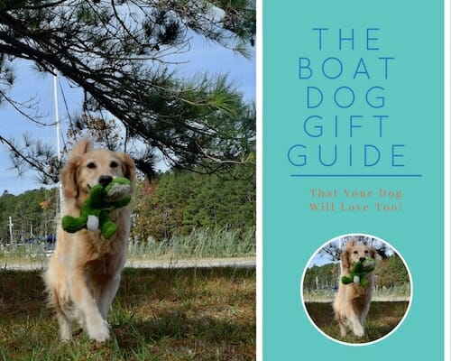 Best Gifts for Boat Dogs