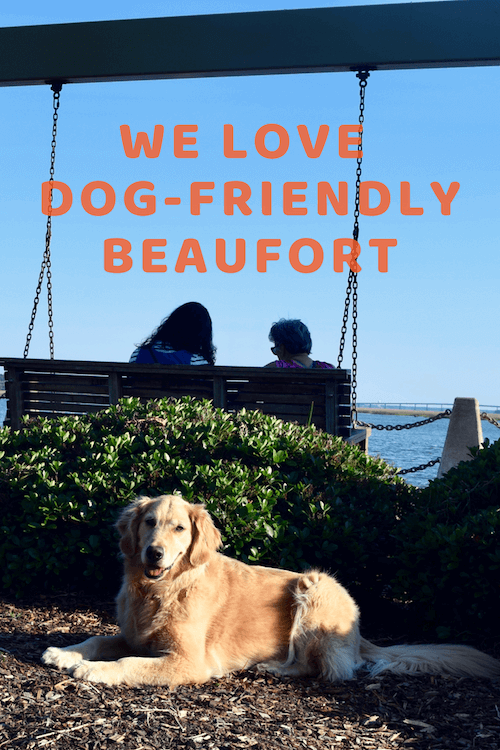 Honey looking pretty in Chambers Waterfront Park is one reason we love dog-friendly Beaufort.