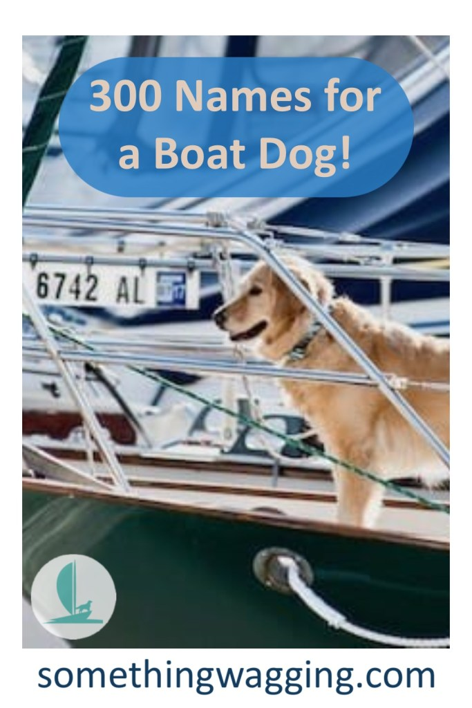 300+ names for boat dogs! One will be perfect for your nauti girl or boy.