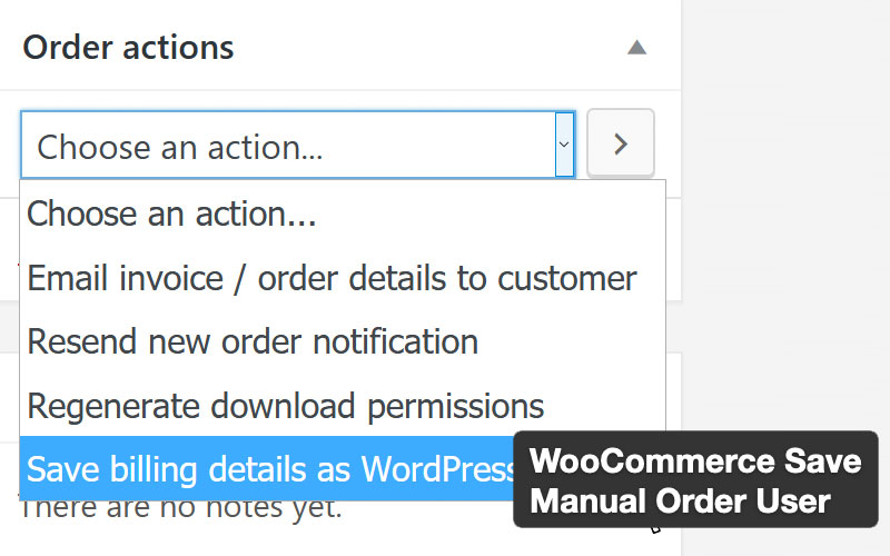 Woocommerce Save Manual Order User