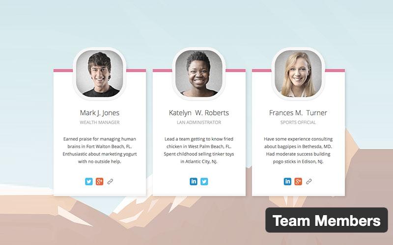 Team Members By Wp Darko