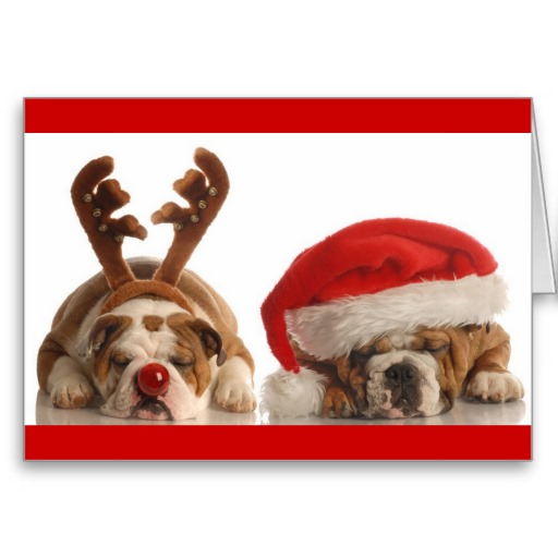 chrismas_dreams_cards-r3c0eb74ef81c477ca8d88b54a04502b5_xvuak_8byvr_512