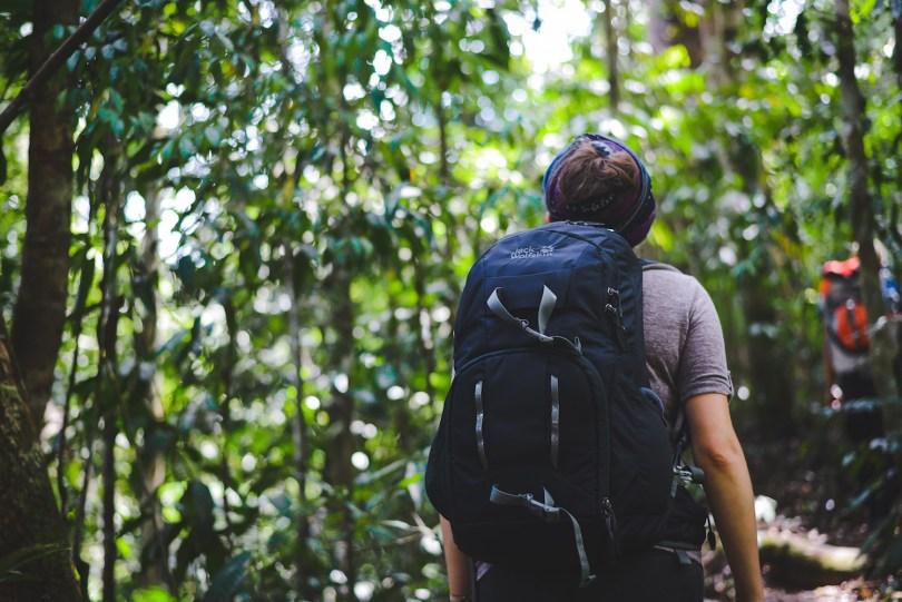 Bukit-Lawang-Tschungel-Treck-3