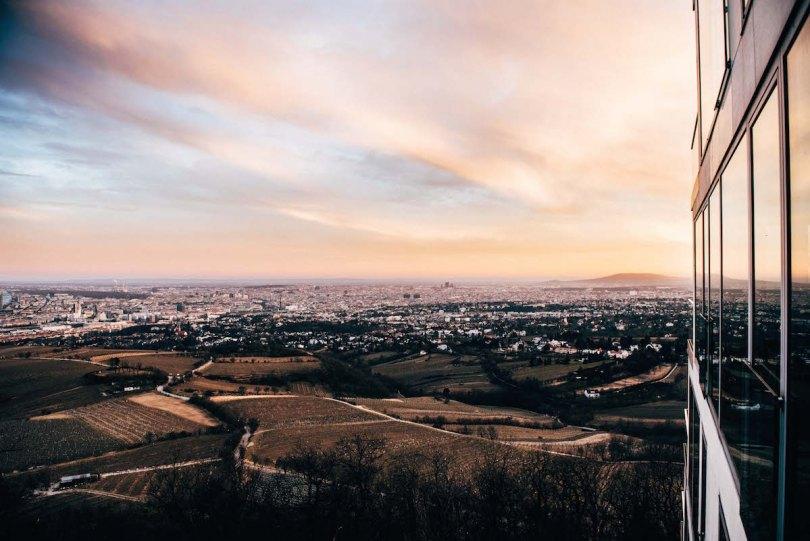 Sonnenuntergang Kahlenberg