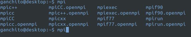 Resultado de la instalación de MPI en un ordenador