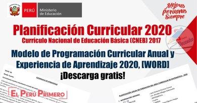 MINEDU: Modelo de Programación Curricular Anual y Experiencia de Aprendizaje 2020, [WORD],  [Material de capacitación – Secundaria], www.minedu.gob.pe