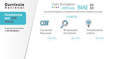 PERUEDUCA: Participa en el Ciclo Formativo Virtual BIAE 2020, Evaluación Formativa y Pensamiento Crítico en el Currículo Nacional, www.perueduca.pe
