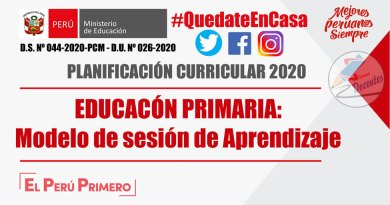 EDUCACIÓN PRIMARIA 2020: Modelo de Sesión de Aprendizaje [WORD]