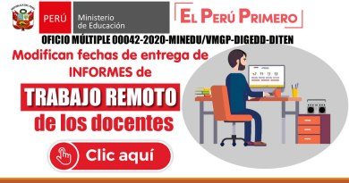 Informe de actividades y reporte del trabajo remoto – Modifican fechas de entrega del informe y otros [Oficio Múltiple 00042-2020-MINEDU/VMGP-DIGEDD-DITEN]