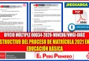 Instructivo del Proceso de Matrícula 2021 en la Educación Básica – OFICIO MÚLTIPLE 00034-2020-MINEDU/VMGI-DIGC [Descarga aquí][PDF]