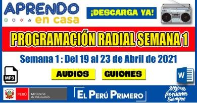APRENDO EN CASA: PROGRAMACIÓN RADIAL SEMANA 01 [19 al 23 de Abril de 2021] Audios y Guiones [Descarga aquí][Word – Mp3]