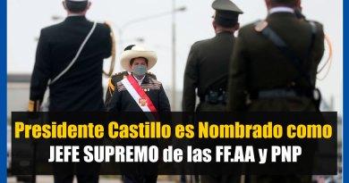 IMPORTANTE: Presidente Castillo es Nombrado como JEFE SUPREMO de las FF.AA. y la PNP [Infórmate aquí]