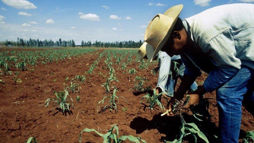 Afectados por la Minería se pronuncian en contra de la Ley Agraria - Periodismo independiente