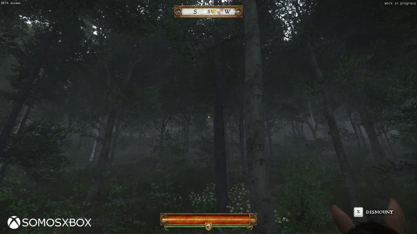 Kingdom Come_ Deliverance 14