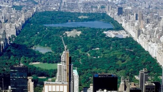 TheDivisionCentralPark
