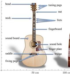 acoustic guitar diagram [ 1000 x 850 Pixel ]