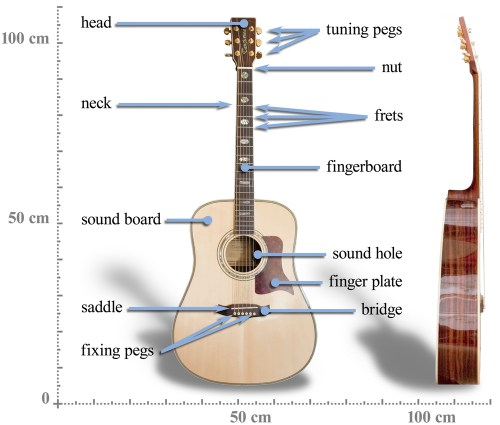 small resolution of acoustic guitar diagram