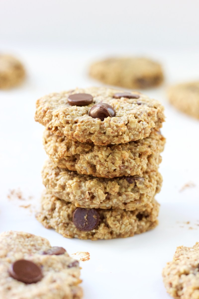 1-Bowl Chocolate Chip Oatmeal Cookies (V + GF)