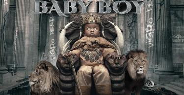 Vigro Deep - Rise Of A Baby Boy Album