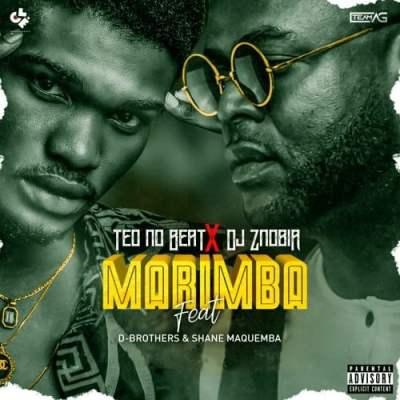 Teo No Beatz X Dj Znobia - Marimba (feat. D.Brothers & Shane Maquemba)