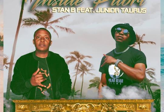 Stan B - Inside Pitori (feat. Junior Taurus)