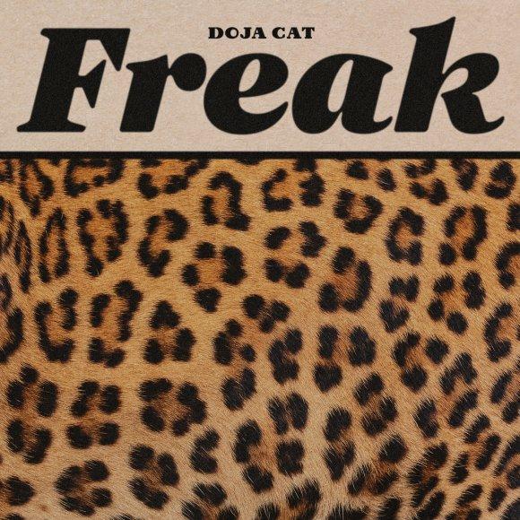 Doja Cat - Freak (Cover)