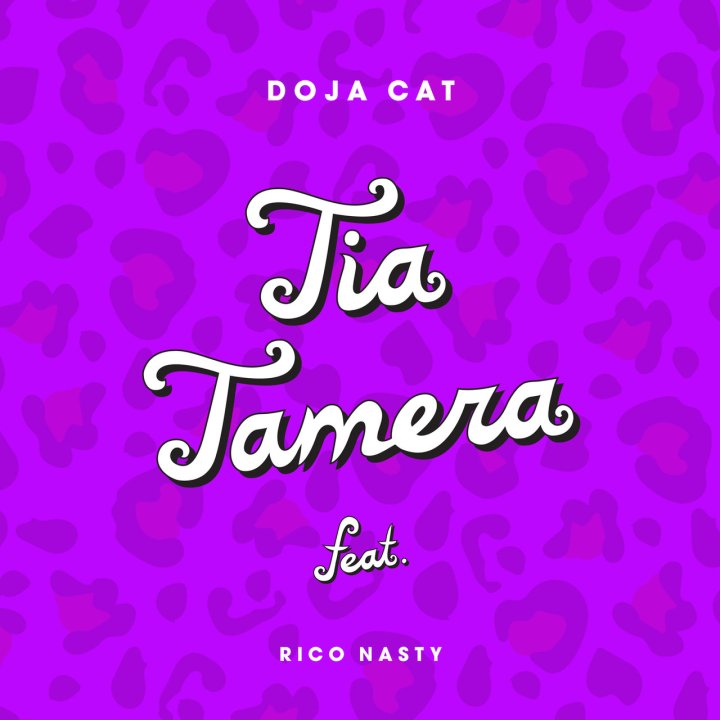Doja Cat - Tia Tamera (ft. Rico Nasty) (Cover)
