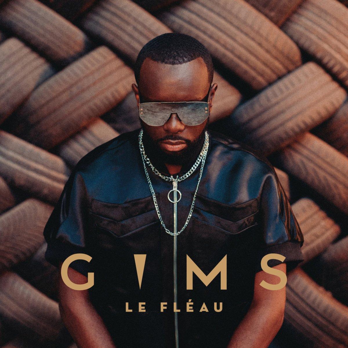 Gims - Le Fléau (Cover)