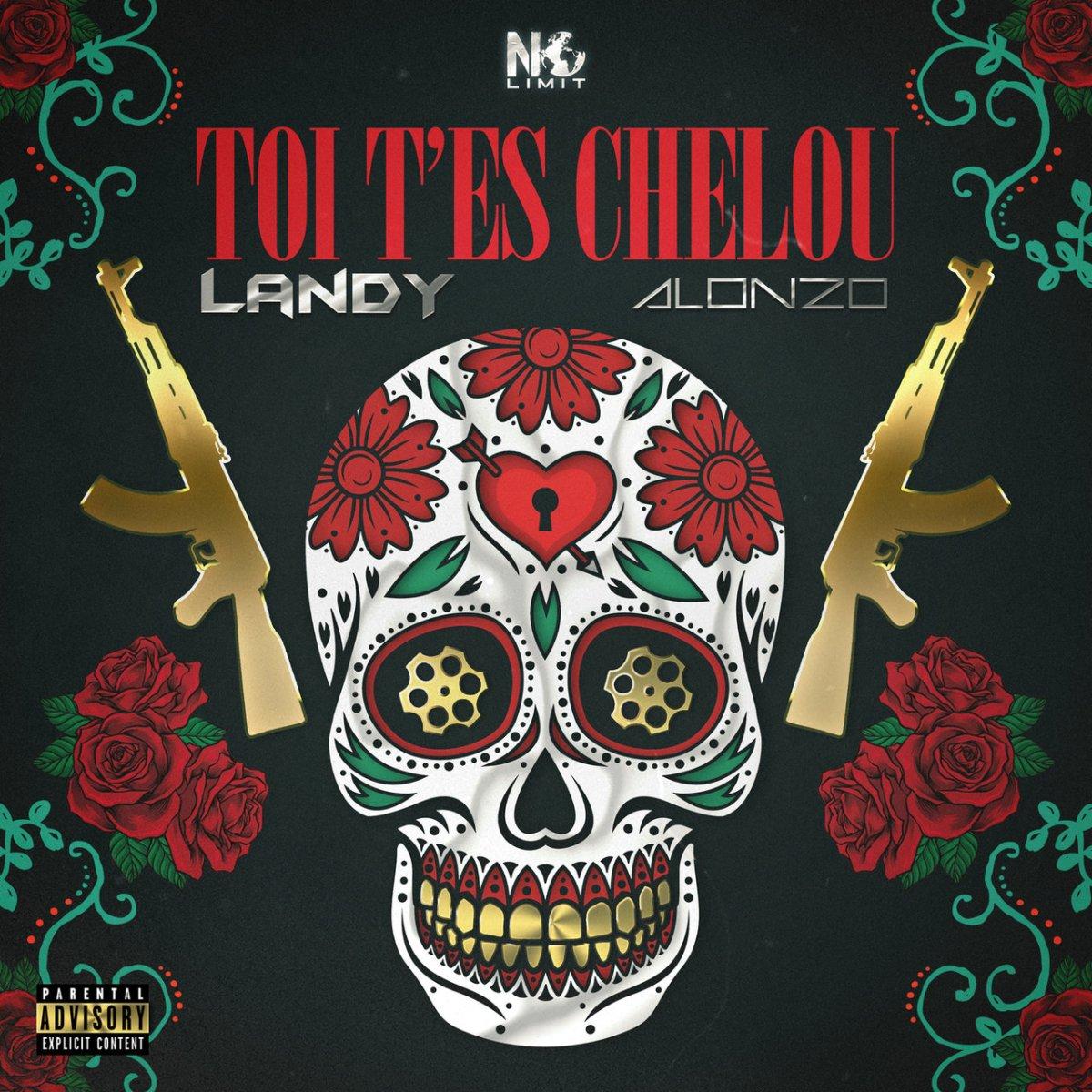 Landy - Toi T'es Chelou (ft. Alonzo) (Cover)