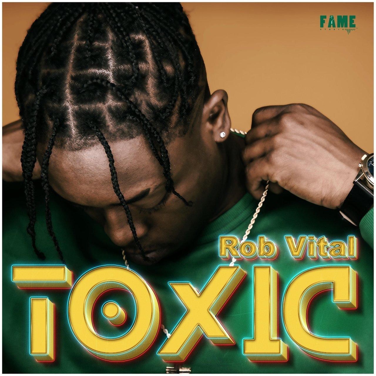 Rob Vital - Toxic (Cover)