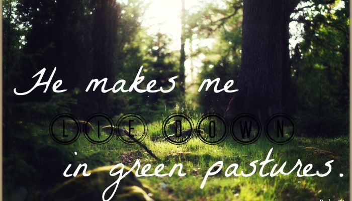 The Gentle Shove of the Shepherd: Psalm 23