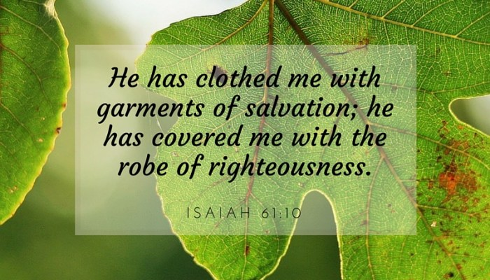 From Fig Leaves to a Robe of Righteousness
