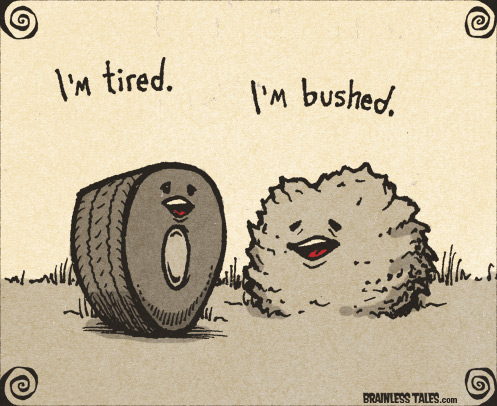 tired-bushed