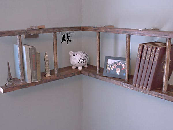 Horizontal Ladder bookshelf