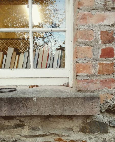ALT=picture of books in a window