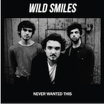 Never Wanted This by Wild Smiles (Single)