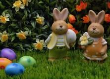 Egg Easter Orange Easter Bunny Easter Eggs Rabbit
