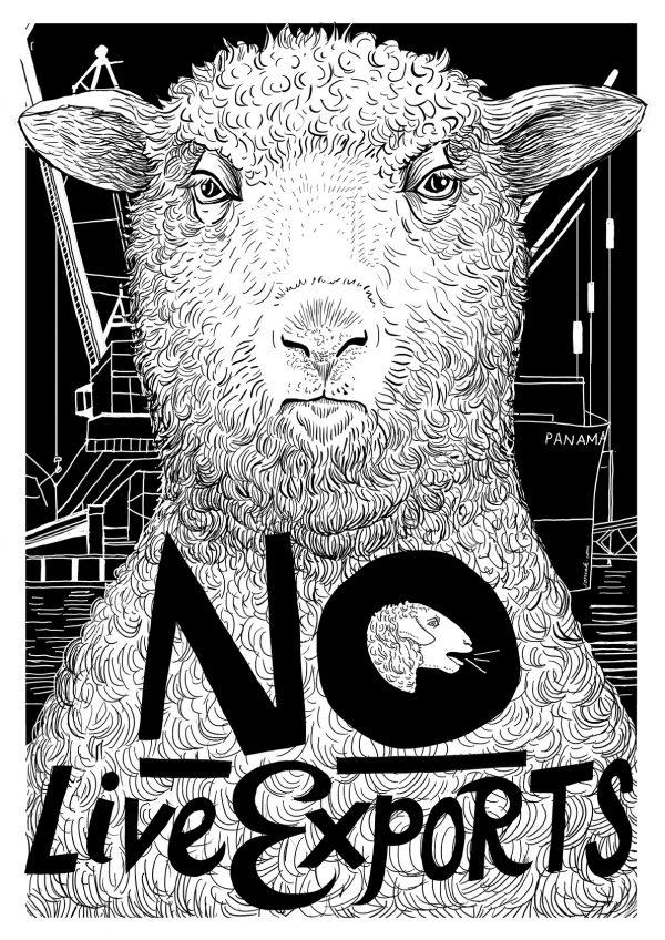 No Live Exports - A2 B&W Poster