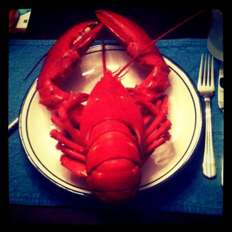 two pound lobster