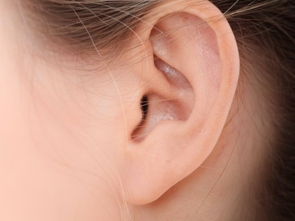Gehrschutz fr kleine Ohren