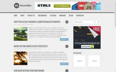 AccentBox Responsive WP Template